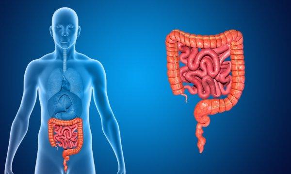 мрт шлунка і кишечника